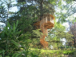 cabane_perchée_arbres
