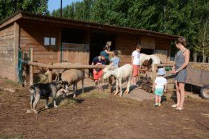 mini ferme-village-vacances (3).jpg